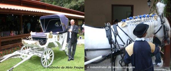 Cavalo-e-carruagem